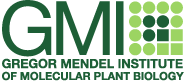 Logo of the Gregor Mendel Institute of Molecular Plant Biology